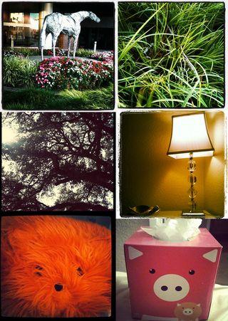 10-2-2011 instagram